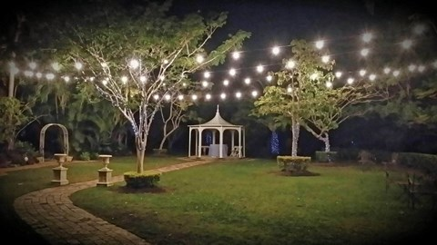 Festoon Lights 20 Bulbs - 20 Metres image
